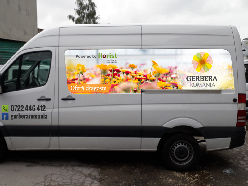 Car wrap Gerbera Romania